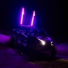 Purple Safety Whip